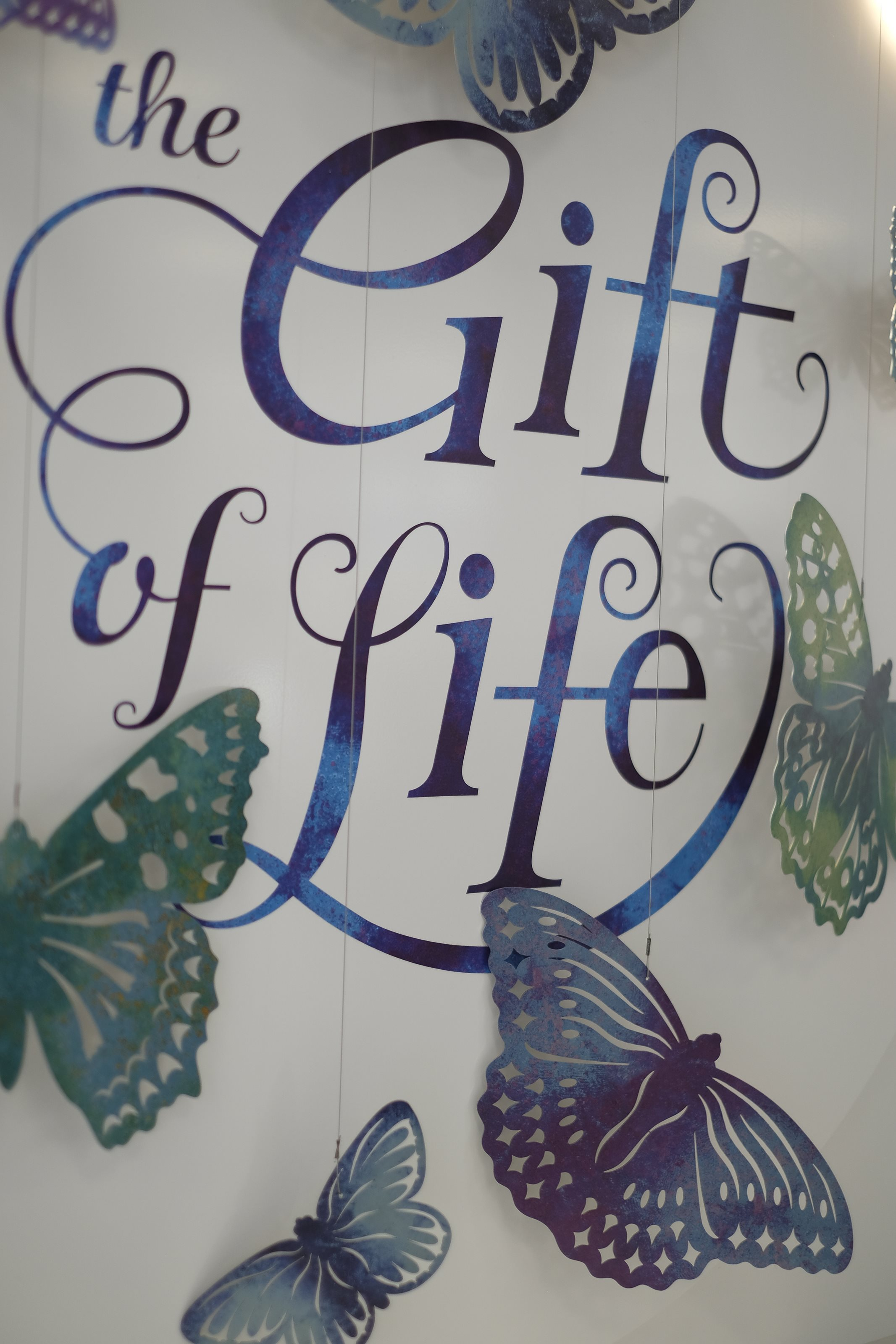 THE GIFT OF LIFE - 'A KALEIDOSCOPE OF BUTTERFLIES'